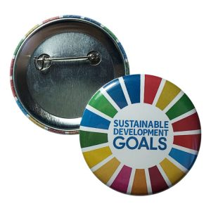 CHAPA ODS – OBJETIVOS DESARROLLO SOSTENIBLE – SDG -UNDP- 6